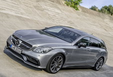 Mercedes-Benz CLS-Klasse Shooting Brake - CLS 250 d Shooting Brake (2017)