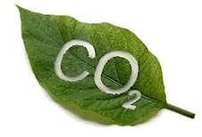 Europese CO2-norm meer dan gehaald