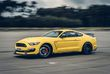 Ford Mustang Shelby GT350R - Cheval de course