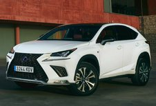 Lexus NX NX 300h Executive Line AWD (2021)