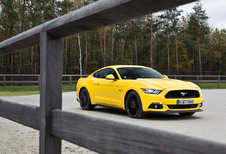Ford Mustang Fastback GT : Muscle car