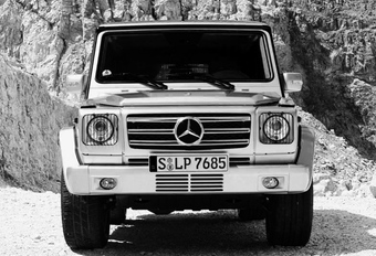 OPGESTOKEN MIDDENVINGER: Mercedes G 65 AMG #1