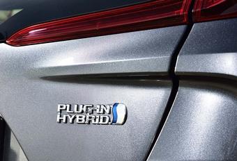 Hybrides: alles over dit fenomeen #1